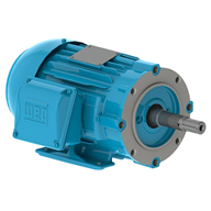 02536ET3E284JM-W22 WEG electric pump motor for sale online