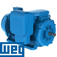 General purpose, W22 Medium Voltage WEG electric motor.