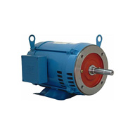 WEG fire pump ODP three phase